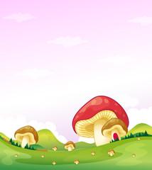 Photo sur Plexiglas Monde magique Mushrooms in the hills