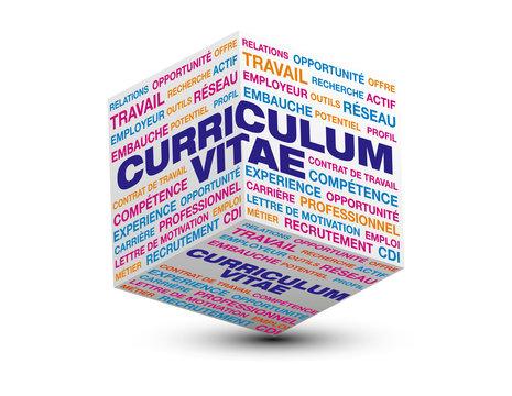 cube 3d curriculum vitae
