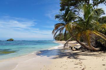 Wild sandy beach with an islet