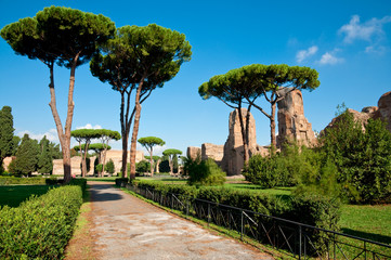 Fototapete - Path and trees from Caracalla springs at Rome