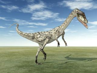 Dinosaurier Coelophysis