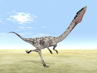 Dinosaurier Coelophysis