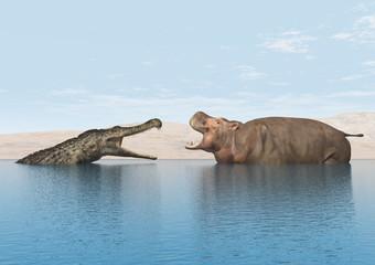 Flusspferd mit Krokodil