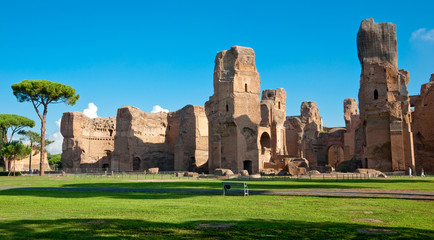 Fototapete - Caracalla springs ruins view from ground panoramic at Rome