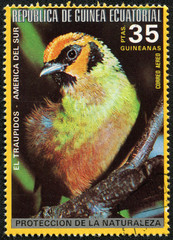 stamp printed in Equatorial Guinea, shows the Traupidos