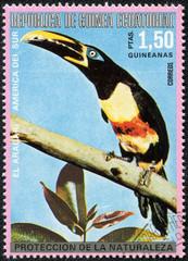 stamp printed by Equatorial Guinea, shows tropical bird