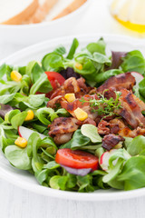 frischer Salat
