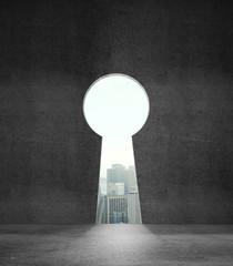 wall like keyhole