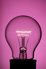 Light bulb on pink
