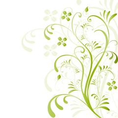 floral, frühling, pflanze, blume, botanik, abstrakt, vektor,