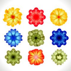 Design Elements. Flower