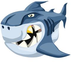 too bad shark