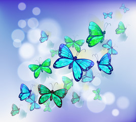 Fotorolgordijn Vlinders Butterflies in a stationery