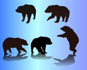 vector set of bears silhouette