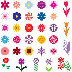 Set multicolor flower