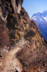 Wall Mural - Himalayan Trekking