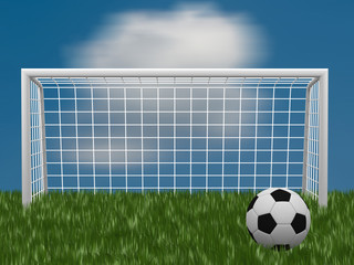 grass football field with ball and gate