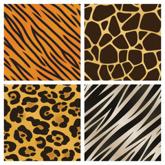 Animal Pattern Collection