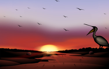 A sunset with a flock of birds