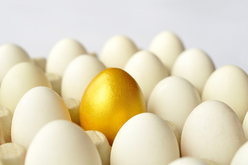 Surprise - golden egg among white eggs