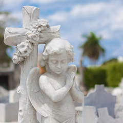 Infant angel praying and christian cross on a  cemetery