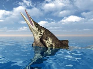 Ichthyosaurier Stenopterygius