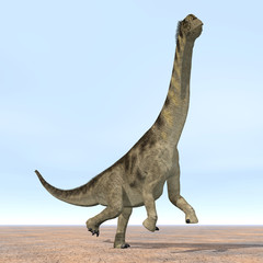 Dinosaur Camarasaurus
