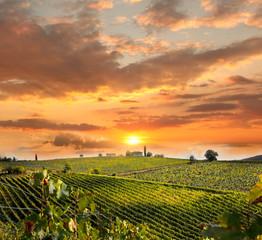 Wall Mural - Chianti, famous vineyard in Italy