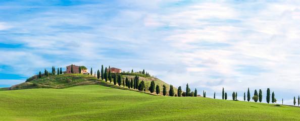 Printed kitchen splashbacks Tuscany Tuscany, landscape