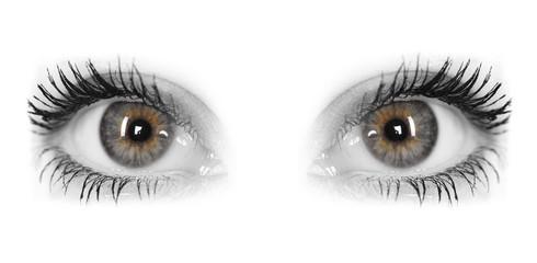 Beautiful Eyes of Woman