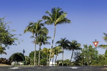 Road to community in Naples, Florida