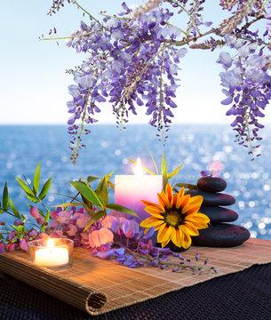 Pietre massaggio, margherite e glicine - fondo mare