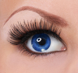 eye with long eyelashes. beautiful woman blue eye