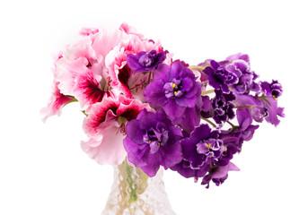 violet and geranium flowers