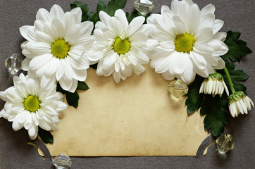 Backdrop of old photo with daisies