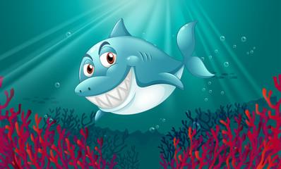 Poster Submarine A blue shark under the sea