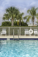 Swimming pool against palms in