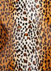 Cheetah skin Pattern texture