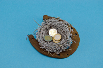 retro rusty horseshoe silver bird nest euro coin