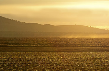 Bright golden sunrise light on newly plowed fields and dust