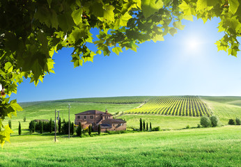 Foto op Canvas Toscane Tuscany landscape with typical farm house