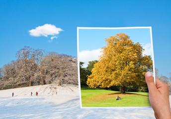 Memorable picture autumn vs winter