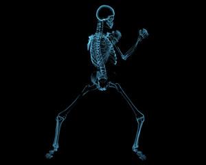 Fighting skeleton (3D xray blue transparent)