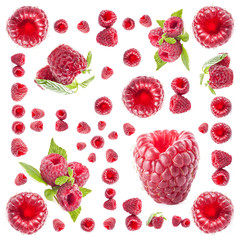 Raspberry background