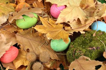 Easter eggs hidden in leaves
