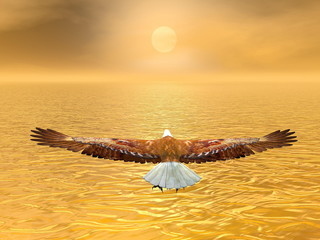 Eagle going to the sun - 3D render