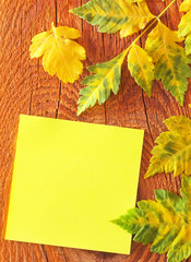 note and leaves on wooden background