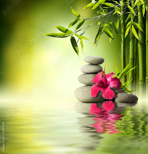 Fototapete Stones, red hibiscus and Bamboo on the water