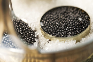 Black caviar in small round metal tin on ice