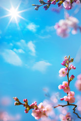 Wall Mural - abstract floral spring background